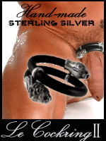 stunning cockrings and jewelry for men